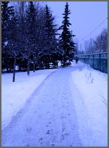 An Early Morning Snowfall in March